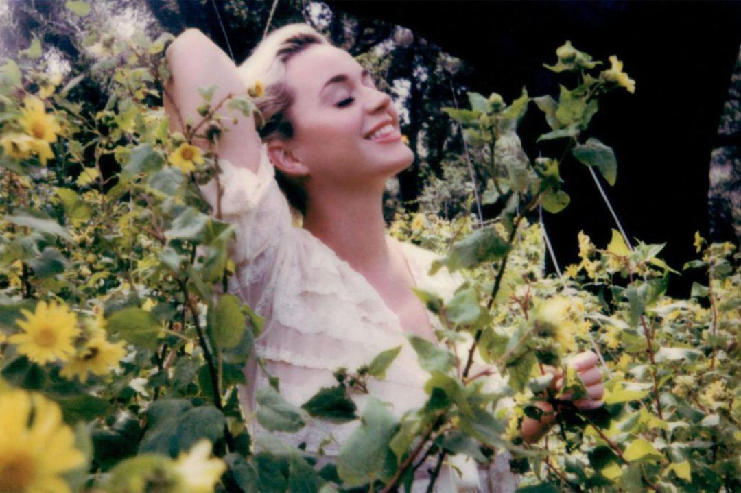 Katy Perry – Daisies   歌詞翻譯與歌曲介紹